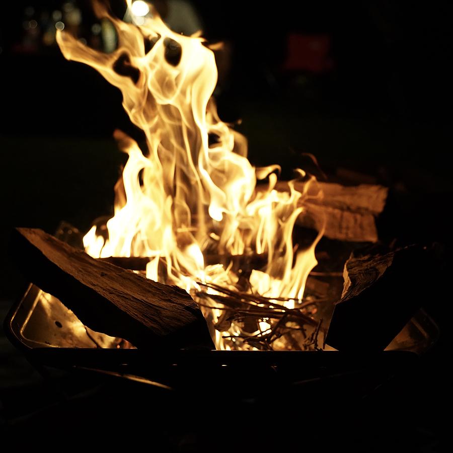 鳥取大山森の国 焚き火