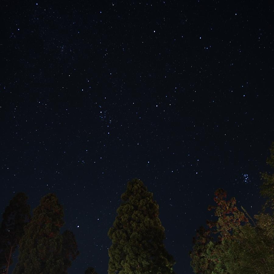 鳥取大山森の国 星空