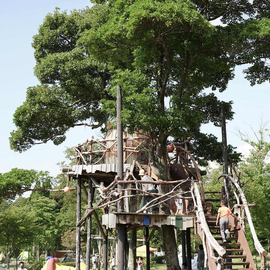鳥取大山森の国ツリーハウス