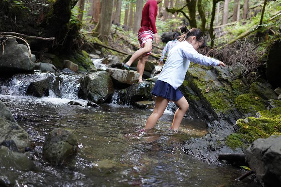 渓流を歩く